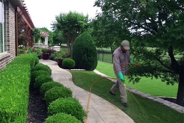 Crabgrass Prevention